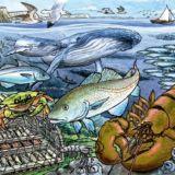 Life in the Atlantic Ocean Tray Puzzle