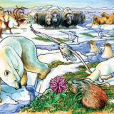 Arctic Adventure Tray Puzzle