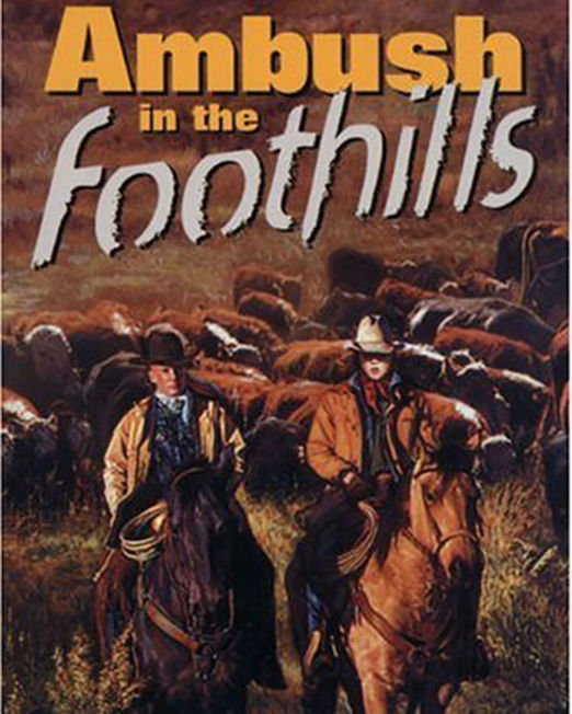 Ambush in the Foothills (Bains Series Book 9)