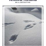 Be a Detective – Animal Tracks Printable